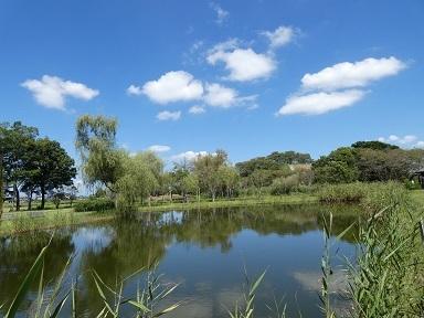 2-2 丸墓山古墳と池面の雲