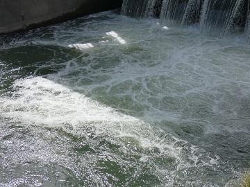 20-3安養寺堰水流