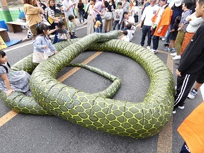 8-3大蛇全体後ろから