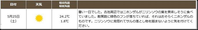 kamikochi2019sp-if0525