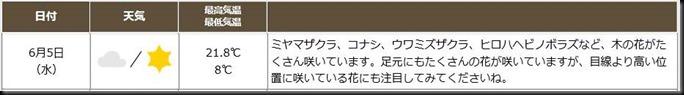 kamikochi2019sp-if0605