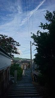 kameokas_0664.jpg