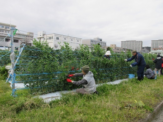 blog-20190116公開講座 (10)