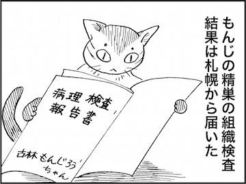 kfc01639-6
