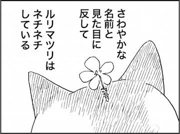 kfc01683-3