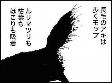 kfc01683-6