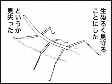 kfc01690-8