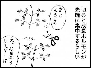 kfc01713-3