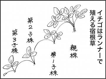 kfc01725-4
