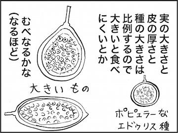 kfc01731-5