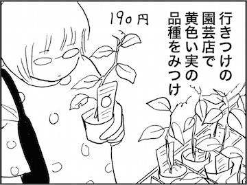 kfc01731-7