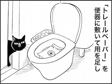 kfc01732-5.jpg