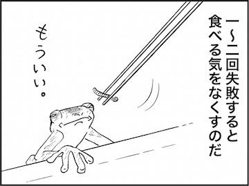 kfc01736-4.jpg