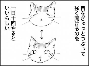 kfc01750-2.jpg