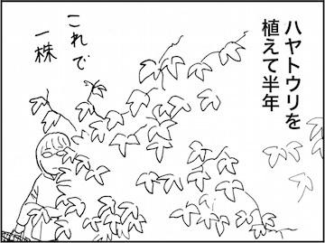 kfc01753-1.jpg