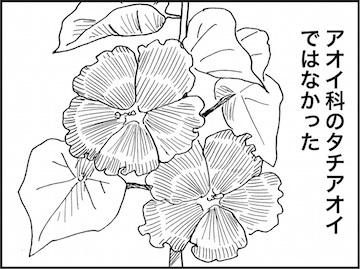 kfc01769-4