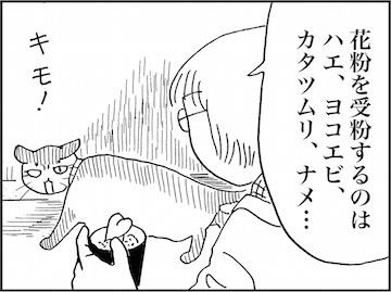kfc01769-7