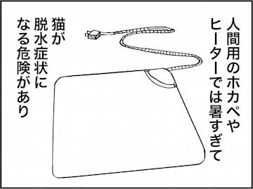 kfc01784-7