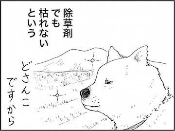 kfc01789-2