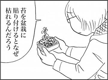 kfc01789-3