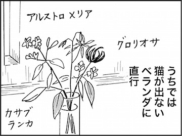 kfc01803-4