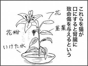 kfc01803-7