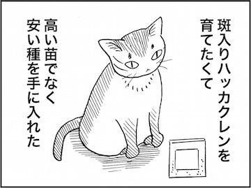 kfc01807-1