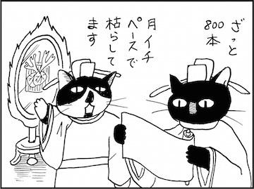 kfc01887-6
