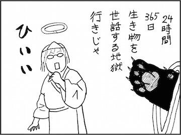 kfc01887-7