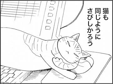 kfc01890-7