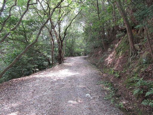 東谷山往路