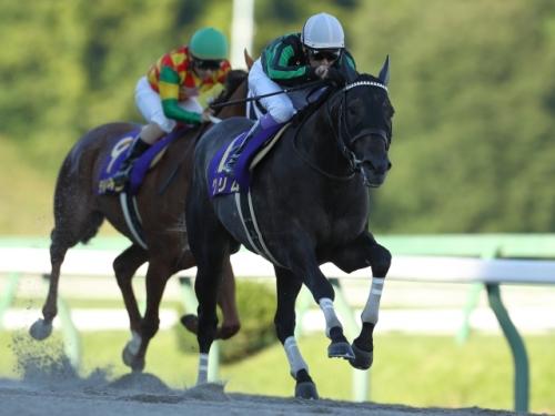 【競馬】武豊のダートのお手馬が凄いことになってる件