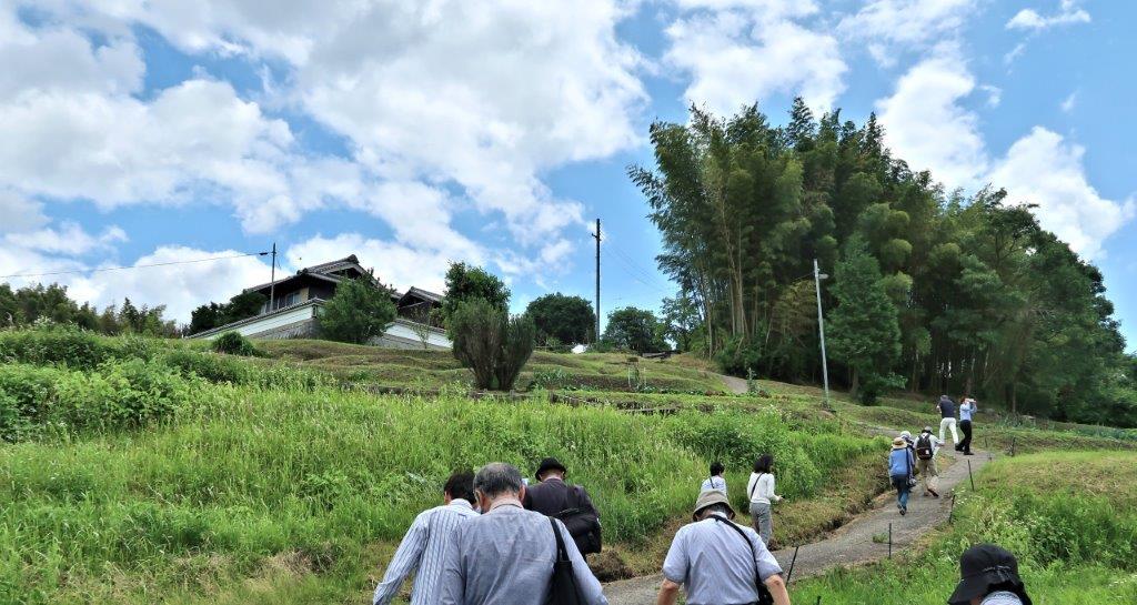 中墓寺に向かう道