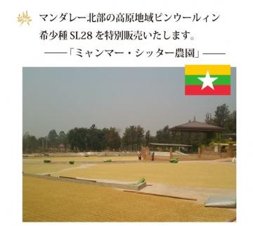 myanma_sita1.jpg