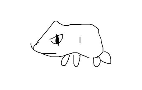 pokemon_20200223114722381.jpg