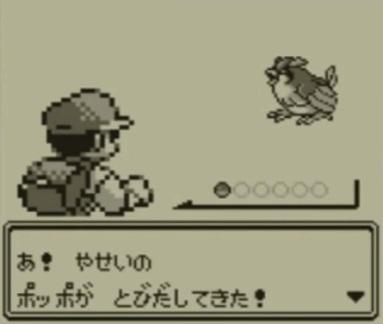 pokemonpoppo_20190802111549f91.jpg