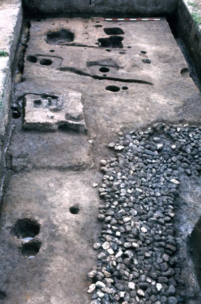豪族居館水祭祀の発祥30