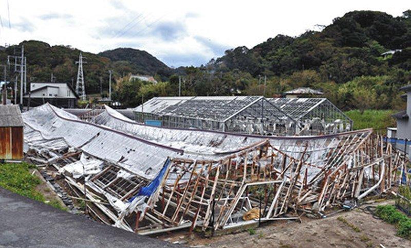 taifuu15gou_jimusho_29.jpg
