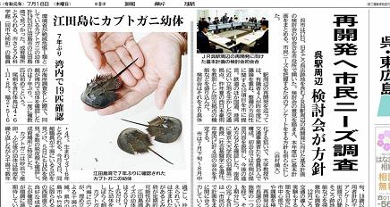 7182019 中国新聞江田島カブト蟹 S