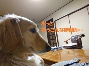 2020_01_21_003ブログ用