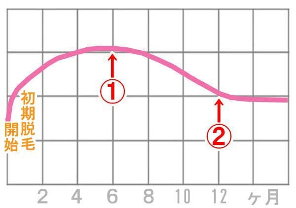 ミノキシジルの効果、変化のグラフ