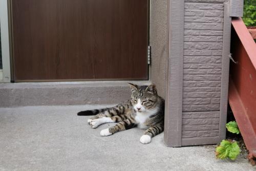 ドアの前で