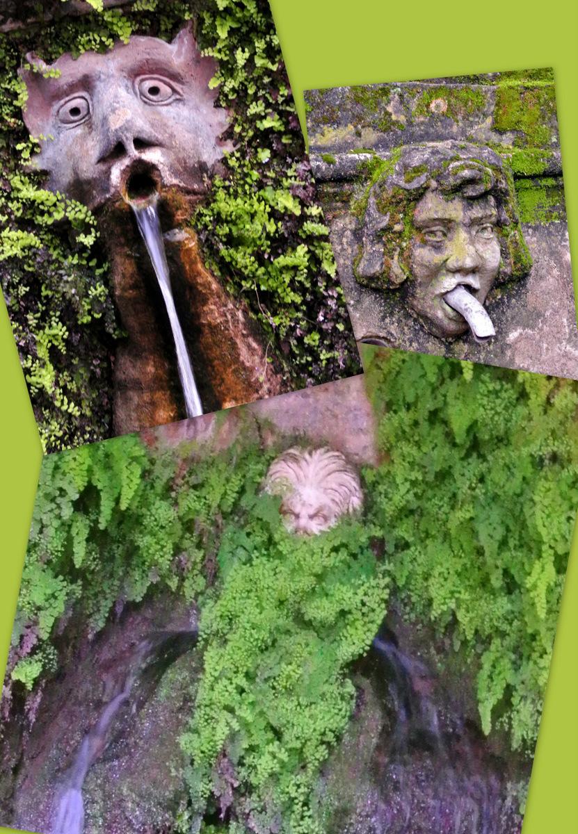 エステ荘庭園3
