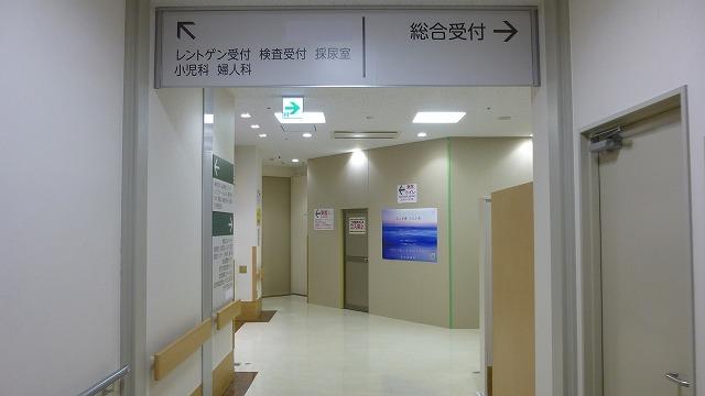 P1070167.jpg