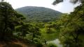 Shikoku0203_ritsurin.jpg