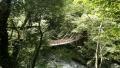 Shikoku0501_kazurabashi.jpg