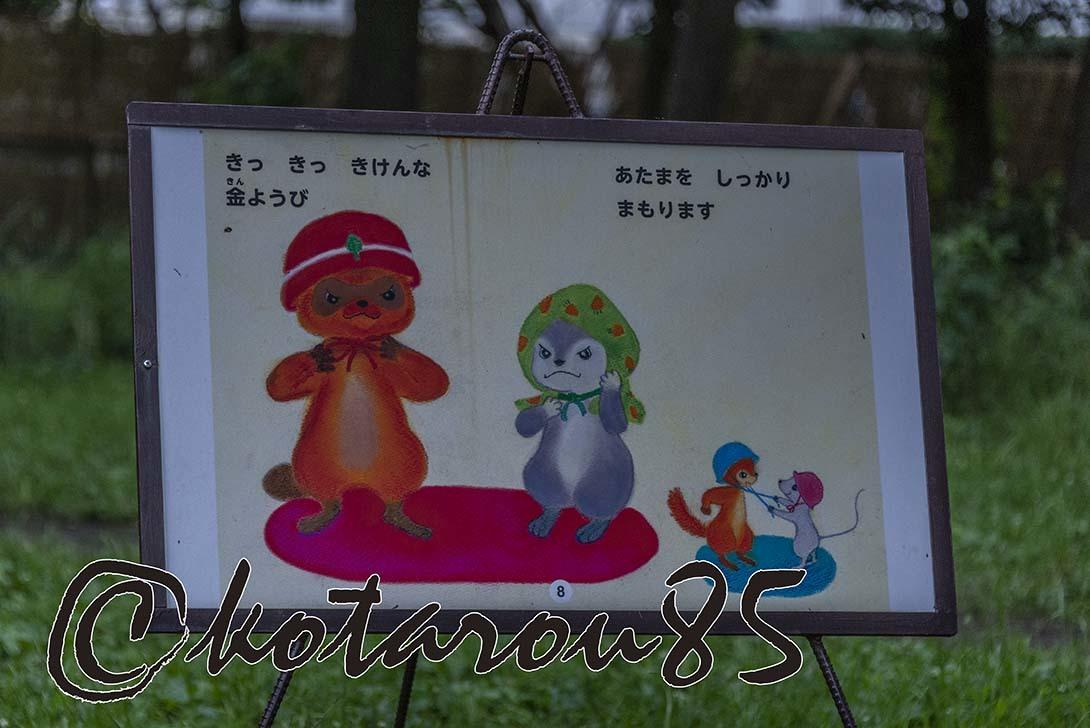 金曜日の猿江恩賜公園2 20190706
