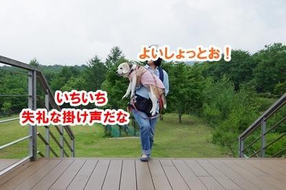 ハマる 7