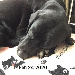 202002244.jpg