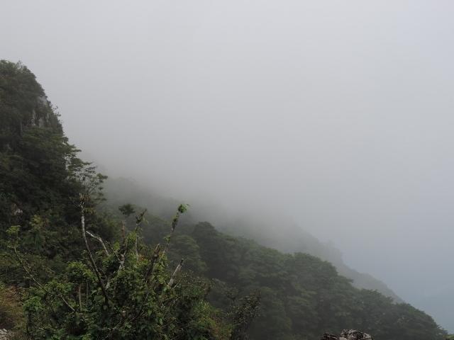 DSCN8169霧 (640x480)